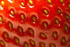 The texture of strawberries