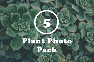 5 Plant Photo Pack