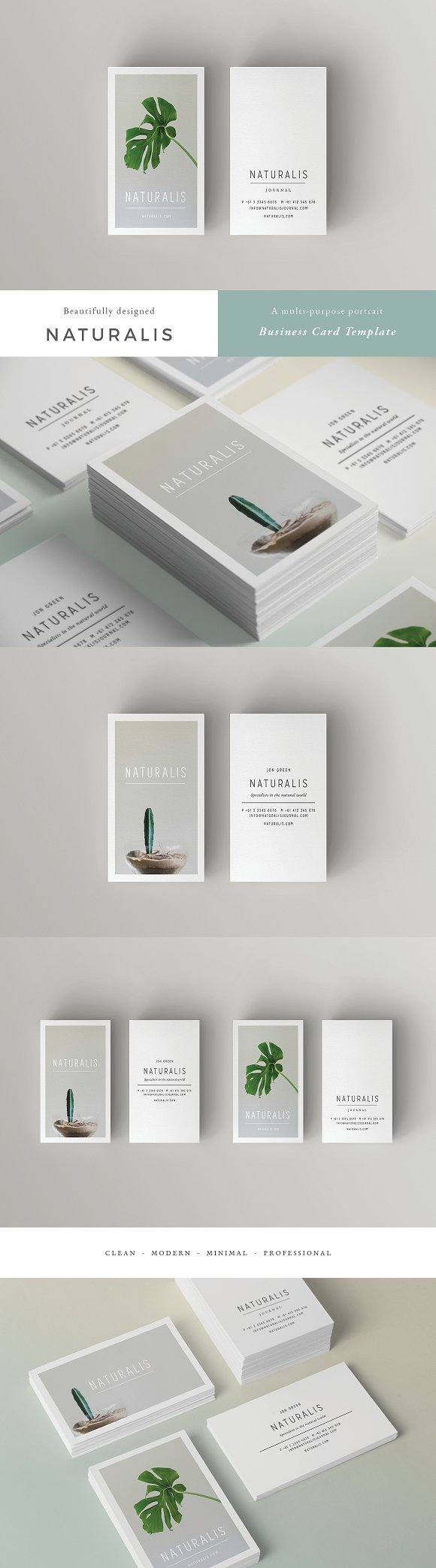 NATURALIS Business Card Template ~ Business Card Templates ...