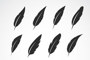 Vector group of feather.