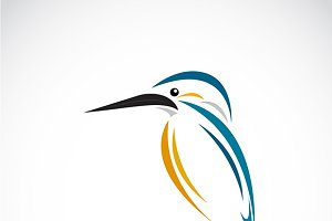 Vector of a kingfishers. Bird
