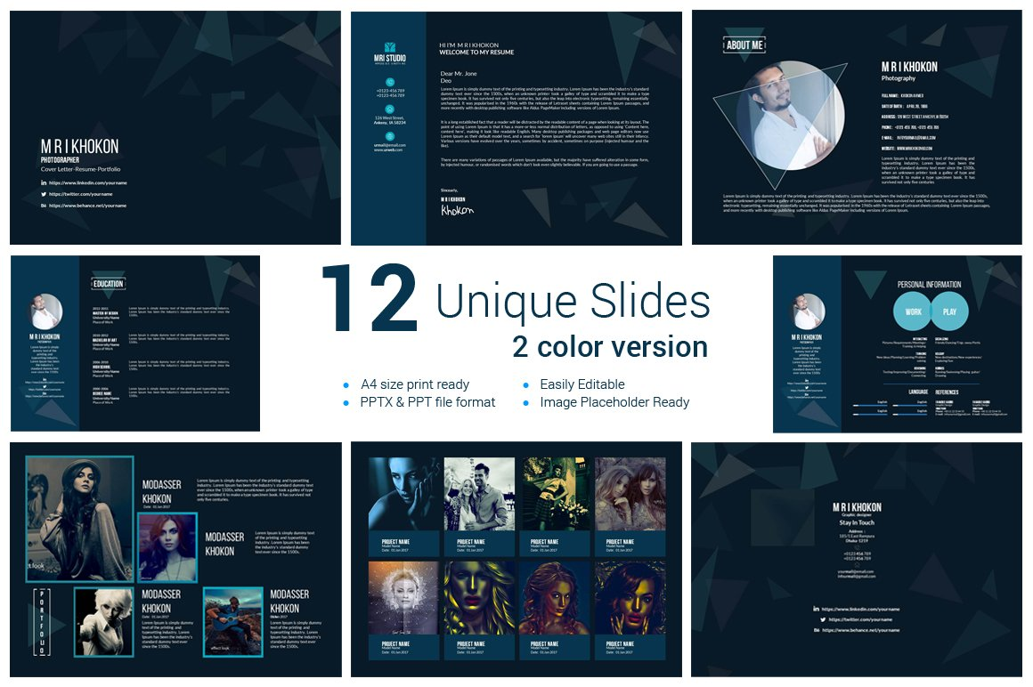 professional cv powerpoint templates