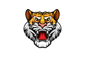 Tiger roaring head muzzle vector mascot icon