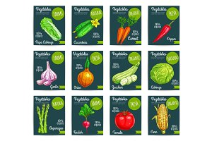 Vegetables vector price tags set