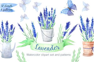 Watercolor Blue Lavender Flowers