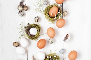 Eggs and nests in the white table