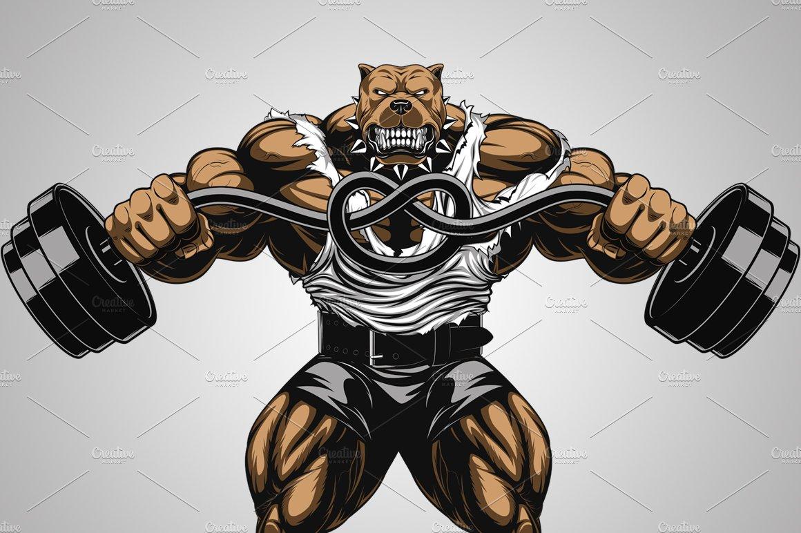 Angry dog bodybuilder ~ Illustrations ~ Creative Market