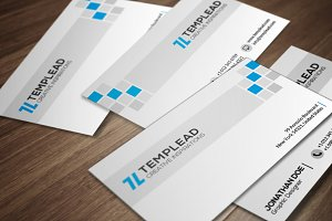 Corporate Business Card CM139