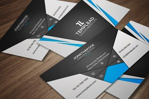 Corporate Business Card CM141