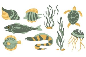 Stylized Underwater Nature Collection Of Icons