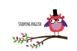 Clever Owl studying English banner