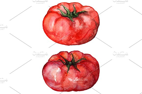 Watercolor tomato vegetable set