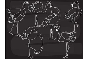 Vector Chalkboard Flamingo