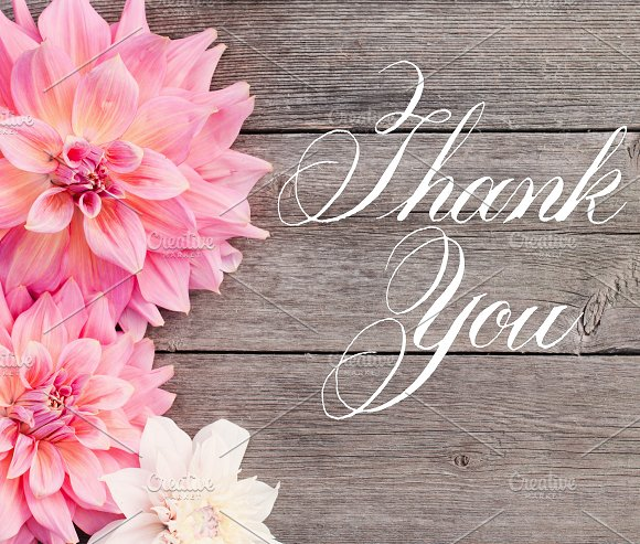 Thank You Hand LetteredCalligraphy