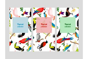 Parrot flyers collection with birds patterns