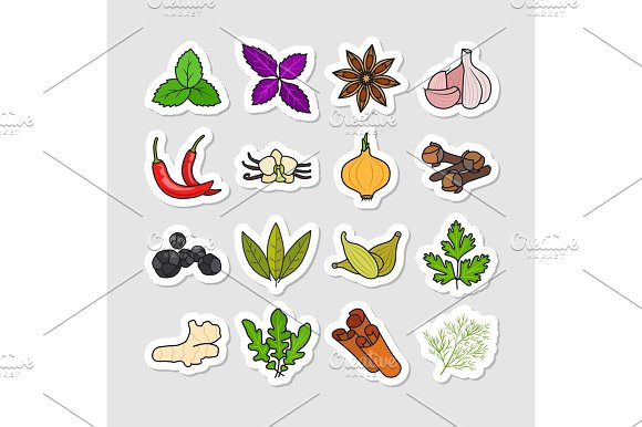 Herbs And Spices Vector Stickers