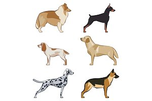 cute cartoon dogs illustration