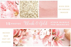 Blush and Gold Stock Photos BUNDLE