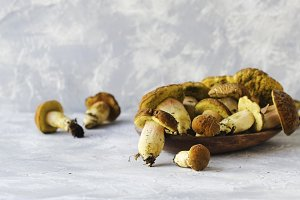 wild forest mushrooms in a wooden box on white marble table, selective focus
