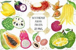 Tropical Asian fruits watercolors