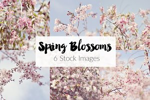 Spring Blossoms ~ 6 Stock Images