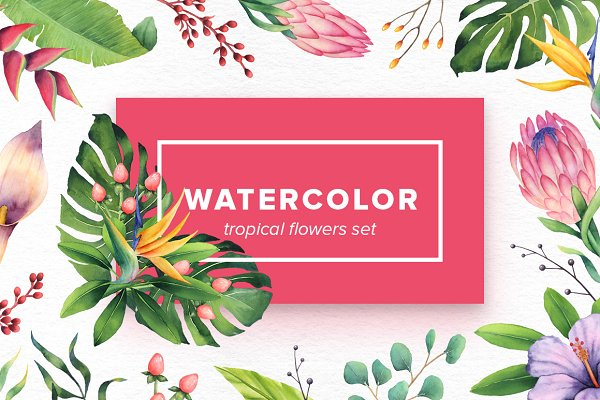 Watercolor Tropical Flowers Set