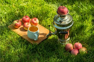 Rustic samovar steel teapot on the fresh spring summer lawn serve with the wooden board and apples and cup. Picnic leisure vacation holidays