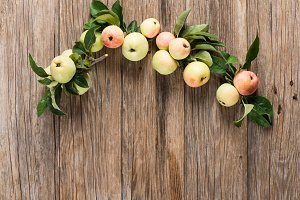 Organic apples on branches