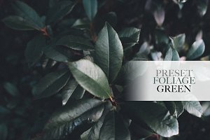 Foliage Green Nature Preset