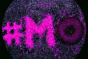 Glitter Text Mood Minimal Design