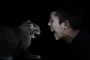 Angry Cat and Man