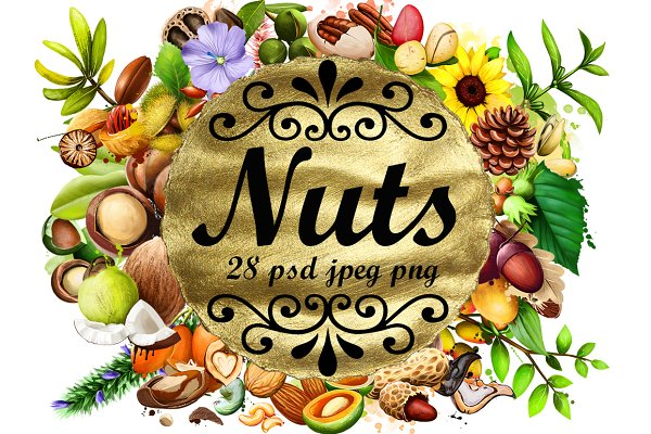 Nuts. Digital art collection - 28pc…