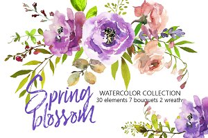 Spring Blossom Watercolor Flowers