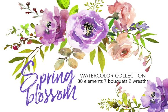 Spring Blossom Watercolor Flowers Illustrations Creative Market