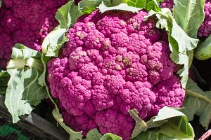 Purple cauliflower at the market