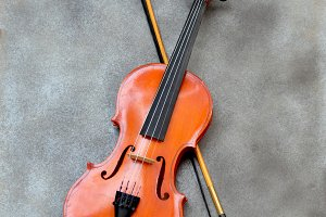 Violin and bow on gray background