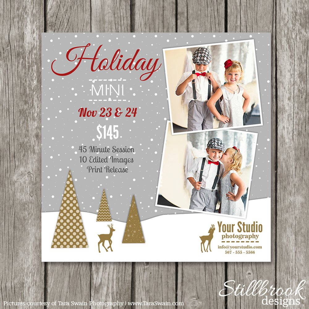 christmas mini session template flyer templates creative market. Black Bedroom Furniture Sets. Home Design Ideas