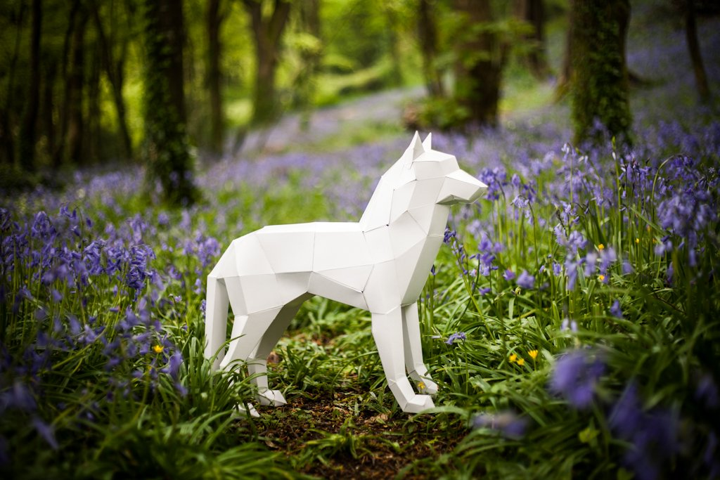 3d Wolf Dog Papercraft Templates Creative Market