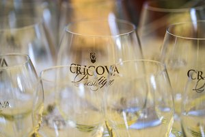Cricova Prestige Empty Wine Glasses