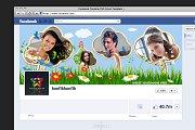 Facebook Timeline  Leaf Photo Style
