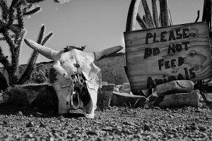 Do not feed animals