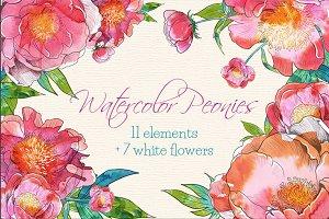 Watercolor Peonies - 18 clip arts