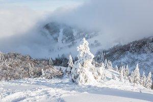 Mystic winter landscape