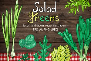 Vector set of green salad leaves