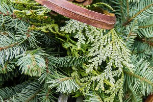 Christmas arrangement of greens