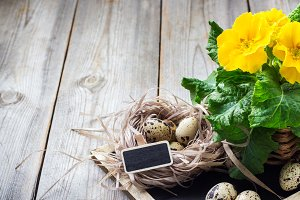 Easter festive composition with flowers and quail eggs