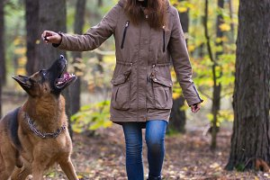 Young cute woman playing with German Shepherd dog outdoors in the autumn forest