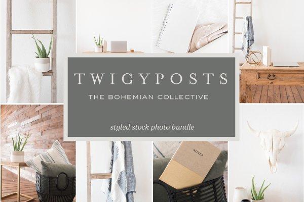 Bohemian Collective   Stock Photos