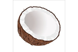 Half of Coconut. Tropical Nut Isolated illustration