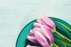 Purple tulips on pastel background